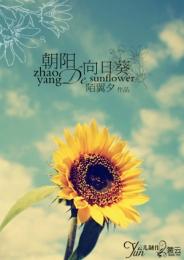 朝陽的向日葵