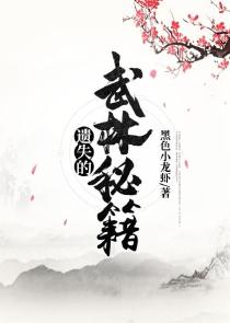 遗失的武林秘籍