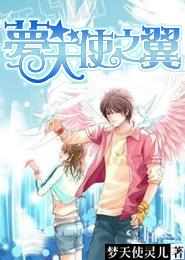梦天使之翼
